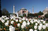 Екскурзия до Истанбул | Автобусна екскурзия до Истанбул, Турция | Празник на Лалето в Истанбул